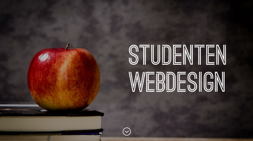 Studenten Webdesign und WordPress Coaching